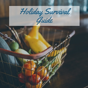 Holiday Survival Guide-2